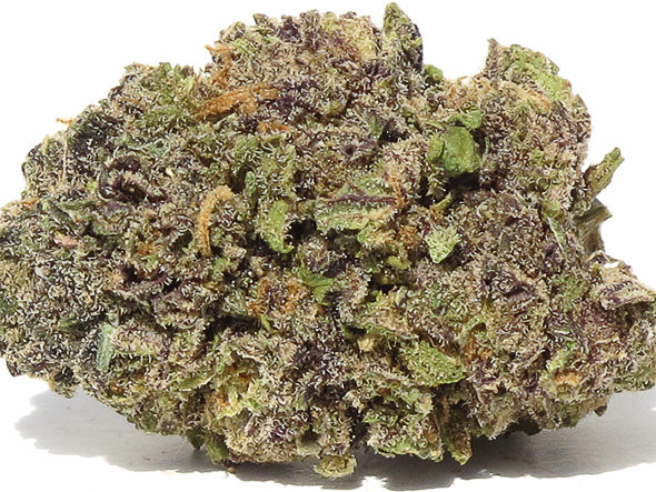 Grand Daddy Purple 1