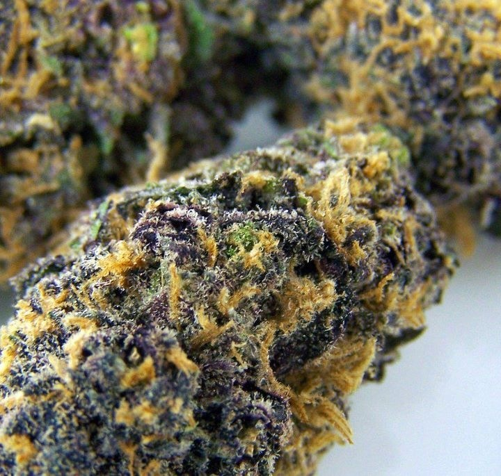 pineapple purple kush